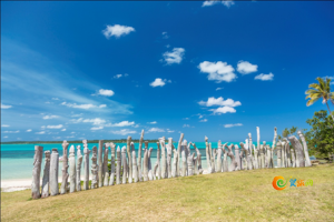 图注:迷人的新喀里多尼亚